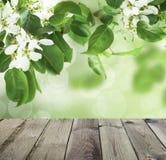 Όμορφο υπόβαθρο ανοίξεων με τον γκρίζο κενό ξύλινο πίνακα Στοκ φωτογραφία με δικαίωμα ελεύθερης χρήσης