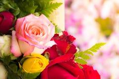 Όμορφο υπόβαθρο με τα τριαντάφυλλα λουλουδιών Στοκ Εικόνα