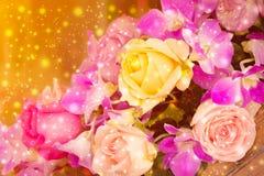 Όμορφο υπόβαθρο με τα τριαντάφυλλα λουλουδιών Στοκ Εικόνες