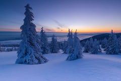 Όμορφο υπόβαθρο με τα χειμερινά δέντρα που καλύπτονται με το φρέσκο χιόνι στα βουνά με το ζωηρόχρωμο ουρανό στην ανατολή στοκ εικόνες