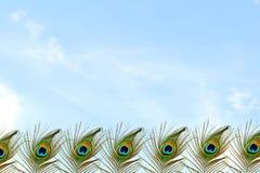 Όμορφο υπόβαθρο με το φτερό peacock στο υπόβαθρο ουρανού Στοκ εικόνα με δικαίωμα ελεύθερης χρήσης