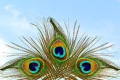 Όμορφο υπόβαθρο με το φτερό peacock στο υπόβαθρο ουρανού Στοκ φωτογραφίες με δικαίωμα ελεύθερης χρήσης