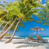 Όμορφο υπόβαθρο παραλιών, μπλε θάλασσα και πράσινοι φοίνικες Διακοπές θερινού ταξιδιού και έννοια υποβάθρου διακοπών Στοκ Εικόνες