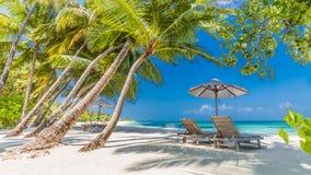 Όμορφο υπόβαθρο παραλιών, μπλε θάλασσα και πράσινοι φοίνικες Διακοπές θερινού ταξιδιού και έννοια υποβάθρου διακοπών Στοκ Φωτογραφία