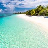 Όμορφο υπόβαθρο παραλιών, μπλε θάλασσα και πράσινοι φοίνικες Διακοπές θερινού ταξιδιού και έννοια υποβάθρου διακοπών Στοκ Φωτογραφίες
