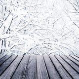 Όμορφο υπόβαθρο τοπίων Χαρούμενα Χριστούγεννας με το χιονώδες δάσος Στοκ Εικόνες
