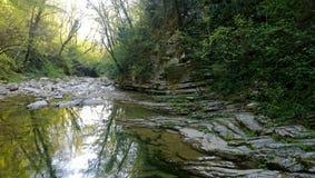 Όμορφο φαράγγι με τον ποταμό, τους βράχους και την πολύβλαστη βλάστηση στοκ εικόνες με δικαίωμα ελεύθερης χρήσης