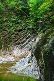 Όμορφο φαράγγι στο δάσος με ρέοντας ρεύματα του κολπίσκου βουνών Στοκ φωτογραφία με δικαίωμα ελεύθερης χρήσης