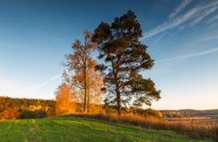 Όμορφο φθινοπωρινό τοπίο ηλιοβασιλέματος Στοκ Φωτογραφίες