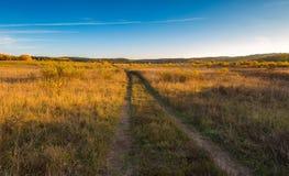 Όμορφο φθινοπωρινό τοπίο με το λιβάδι, τα δέντρα και το δρόμο Στοκ Εικόνες