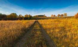 Όμορφο φθινοπωρινό τοπίο με το λιβάδι, τα δέντρα και το δρόμο Στοκ Εικόνα