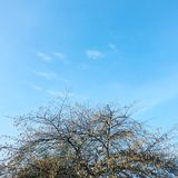 Όμορφο φθινόπωρο Στοκ Φωτογραφίες