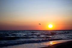 Όμορφο φλογερό ηλιοβασίλεμα στο μόνο πουλί παραλιών που πετά στον ήλιο πέρα από τη θάλασσα Στοκ εικόνες με δικαίωμα ελεύθερης χρήσης