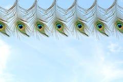 Όμορφο φτερό peacock στο υπόβαθρο ουρανού Στοκ εικόνες με δικαίωμα ελεύθερης χρήσης