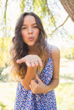 Όμορφο φυσώντας φιλί brunette στη κάμερα Στοκ φωτογραφία με δικαίωμα ελεύθερης χρήσης