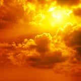 όμορφο φωτεινό ηλιοβασίλ& Στοκ εικόνες με δικαίωμα ελεύθερης χρήσης