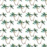 Όμορφο φωτεινό χαριτωμένο πράσινο τροπικό καλό θαυμάσιο floral βοτανικό θερινό σχέδιο της Χαβάης ενός σκίτσου χεριών watercolor φ Στοκ Φωτογραφία