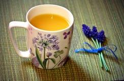 Όμορφο φλυτζάνι με το χυμό από πορτοκάλι Στοκ φωτογραφία με δικαίωμα ελεύθερης χρήσης