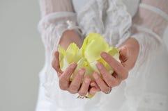 Όμορφο χέρι με το τέλειο γαλλικό μανικιούρ αντιμετωπισμένο hol καρφιών Στοκ εικόνα με δικαίωμα ελεύθερης χρήσης