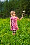 Όμορφο χαμογελώντας μικρό κορίτσι με τις πικραλίδες Στοκ εικόνες με δικαίωμα ελεύθερης χρήσης