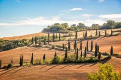 Όμορφο χαρακτηριστικό τοπίο της Τοσκάνης με τις σειρές των κυπαρισσιών, Λα Foce, Τοσκάνη Ιταλία στοκ εικόνες