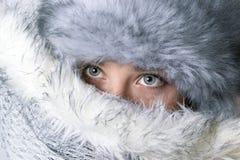 Όμορφο χειμερινό πορτρέτο Στοκ εικόνα με δικαίωμα ελεύθερης χρήσης