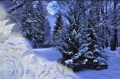 Όμορφο χειμερινό τοπίο κάτω από το παγωμένο γυαλί παραθύρων στοκ εικόνα