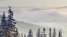 Όμορφο χειμερινό τοπίο με τα χιονισμένα δέντρα χειμώνας βουνών gudauri Καύκασου Γεωργία απόθεμα βίντεο