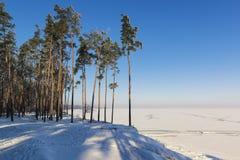 Όμορφο χειμερινό τοπίο με τη δασική και παγωμένη λίμνη πεύκων στοκ φωτογραφίες