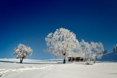Όμορφο χειμερινό τοπίο Ρουμανία Στοκ εικόνα με δικαίωμα ελεύθερης χρήσης