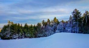 Όμορφο χειμερινό τοπίο στη δυτική Βιρτζίνια timberline Στοκ φωτογραφίες με δικαίωμα ελεύθερης χρήσης