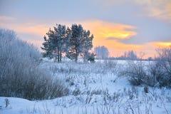 Όμορφο χειμερινό τοπίο στο υπόβαθρο ηλιοβασιλέματος Στοκ Εικόνα