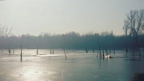 Όμορφο χειμερινό τοπίο την ηλιόλουστη ημέρα Στοκ φωτογραφία με δικαίωμα ελεύθερης χρήσης