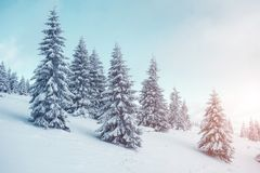 Όμορφο χειμερινό τοπίο Στοκ φωτογραφία με δικαίωμα ελεύθερης χρήσης