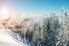 Όμορφο χειμερινό τοπίο Στοκ εικόνες με δικαίωμα ελεύθερης χρήσης