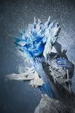 όμορφο χιόνι βασίλισσας Στοκ Εικόνα