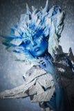όμορφο χιόνι βασίλισσας Στοκ Φωτογραφίες