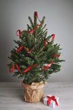 Όμορφο χριστουγεννιάτικο δέντρο με ένα παρόν στοκ φωτογραφίες