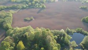 Όμορφο χρονικό τοπίο άνοιξη με τους τομείς, λίμνη και οι Μπους, εναέριοι απόθεμα βίντεο
