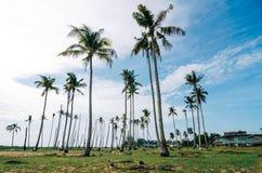 Όμορφο χωριό ψαράδων τοπίου παραδοσιακό που βρίσκεται σε Terengganu, Μαλαισία Στοκ εικόνες με δικαίωμα ελεύθερης χρήσης