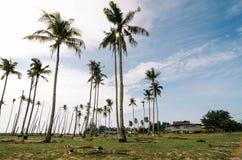 Όμορφο χωριό ψαράδων τοπίου παραδοσιακό που βρίσκεται σε Terengganu, Μαλαισία Στοκ εικόνα με δικαίωμα ελεύθερης χρήσης