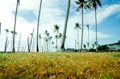 Όμορφο χωριό ψαράδων τοπίου που βρίσκεται σε Terengganu, Μαλαισία Στοκ Φωτογραφία