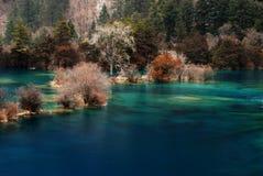 όμορφο ύδωρ κοιλάδων jiuzhai στοκ εικόνα με δικαίωμα ελεύθερης χρήσης