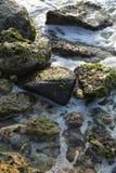 όμορφο ύδωρ Στοκ εικόνες με δικαίωμα ελεύθερης χρήσης