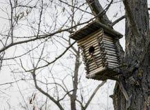 Όμορφο birdhouse σε ένα δέντρο την άνοιξη στοκ εικόνες