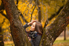 Όμορφο brunette στο μαντίλι στην ημέρα φθινοπώρου Όμορφη τοποθέτηση brunette στον κορμό δέντρων στο μαντίλι στην ημέρα φθινοπώρου Στοκ Εικόνα