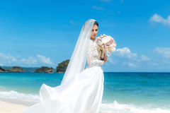 Όμορφο fiancee brunette στο άσπρο γαμήλιο φόρεμα με μεγάλο μακρύ Στοκ Εικόνα