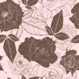 όμορφο floral άνευ ραφής διάνυσμα προτύπων Στοκ Φωτογραφία