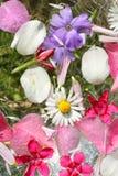Όμορφο, floral ροζ, υπόβαθρο Στοκ Εικόνες