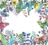 Όμορφο floral υπόβαθρο με την πεταλούδα για το σχέδιο διακοπών διανυσματική απεικόνιση
